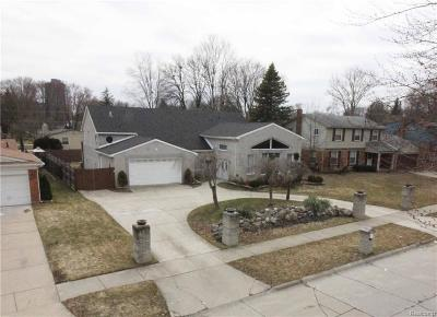 Southfield Single Family Home For Sale: 21191 Andover Rd