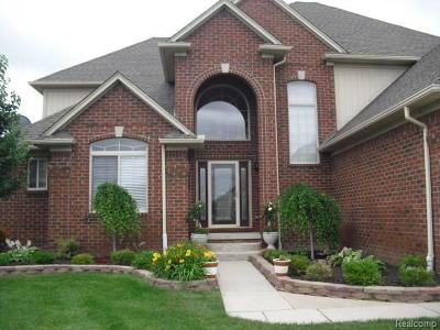 Macomb MI Single Family Home For Sale: $379,900