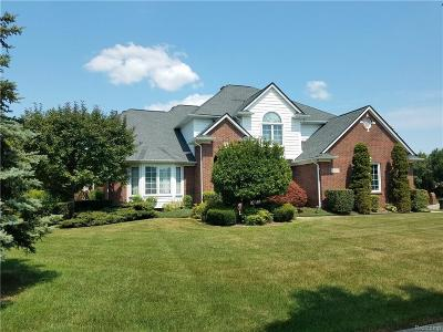 Shelby Twp Single Family Home For Sale: 14289 Patterson Dr