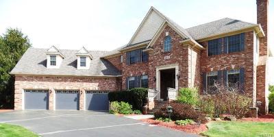 Clarkston Single Family Home For Sale: 6875 Palmyra