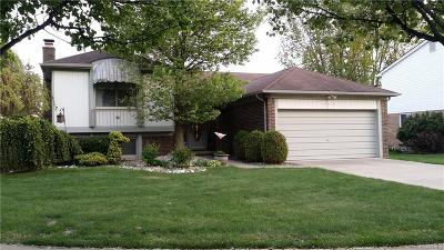 Sterling Heights Single Family Home For Sale: 15160 Paramount Crt
