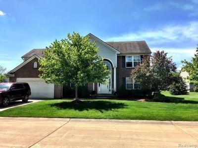 Southfield Single Family Home For Sale: 26977 N Monroe Dr