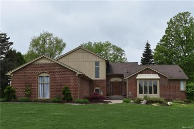 Rochester Hills Single Family Home For Sale: 3544 Wedgewood Dr