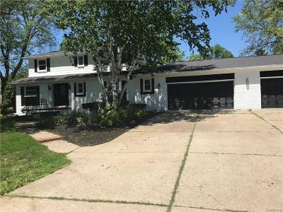 Clinton Township Single Family Home For Sale: 16119 Chatham Dr