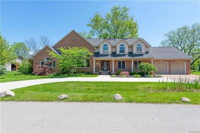 Rochester Hills Single Family Home For Sale: 3649 Orchard View Ave N