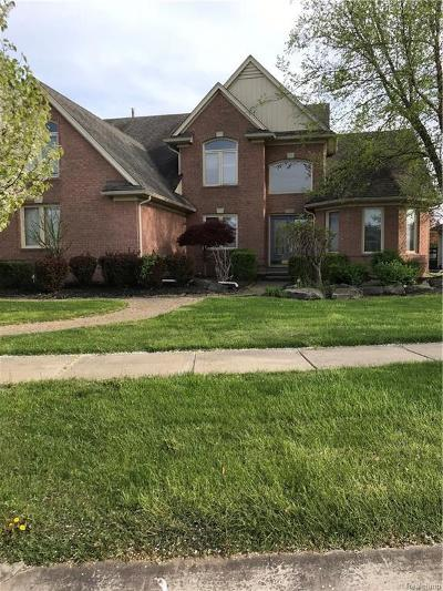 Macomb Single Family Home For Sale: 20218 Glenview Crt