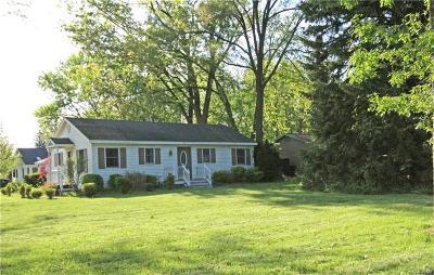 Rochester Single Family Home For Sale: 3790 John R Rd
