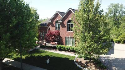 Rochester Single Family Home For Sale: 1146 Autumnview Dr