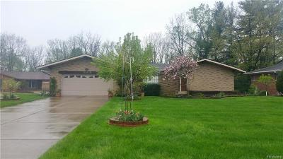 Clinton Township Single Family Home For Sale: 38048 S Bonkay