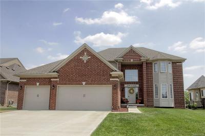 Macomb Single Family Home For Sale: 52596 Storbaelt Ln
