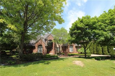 Northville Single Family Home For Sale: 17385 Rolling Woods Cir