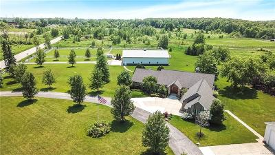 Plymouth Single Family Home For Sale: 9980 Joy Rd