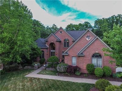 Lake Orion Single Family Home For Sale: 247 Greenan Ln