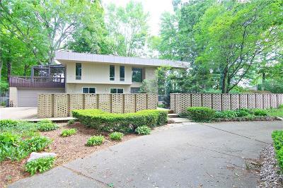 Southfield Single Family Home For Sale: 24340 Custis St