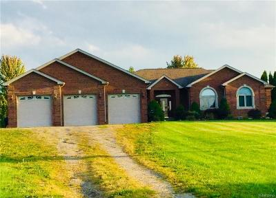 Lapeer Single Family Home For Sale: 3852 Golf Vista Dr