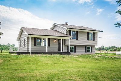 Saint Clair  Single Family Home For Sale: 1431 Stein Rd