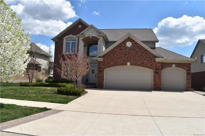 Macomb Single Family Home For Sale: 16026 Moore Park Rd