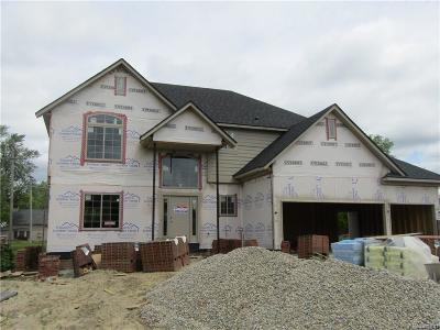 Macomb Single Family Home For Sale: 21821 Rio Grande Dr
