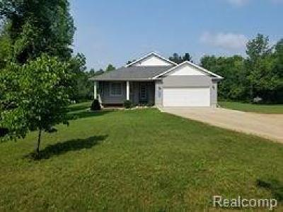 Lapeer Single Family Home For Sale: 4863 Bluewater Dr