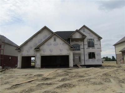 Macomb Single Family Home For Sale: 21932 Rio Grande Dr