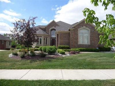 Macomb Single Family Home For Sale: 6600 Glenbrooke Dr