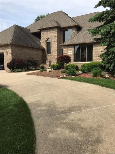Livonia Single Family Home For Sale: 17405 Ellen Dr