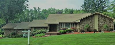Farmington Hills Single Family Home For Sale: 28025 Danvers Dr
