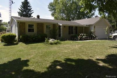 Lapeer Single Family Home For Sale: 1120 Don Wayne Dr