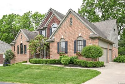 Lake Orion Single Family Home For Sale: 122 Crosbie Crt