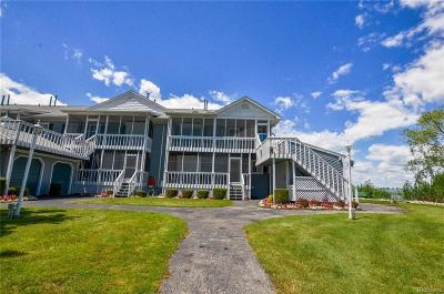 St. Clair Condo/Townhouse For Sale: 9612 South Channel Dr