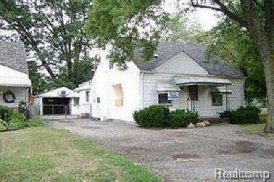 Southfield Single Family Home For Sale: 27057 Shiawassee Rd
