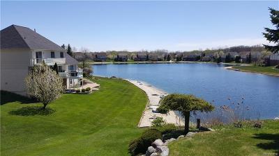 Single Family Home For Sale: 6544 John R Rd