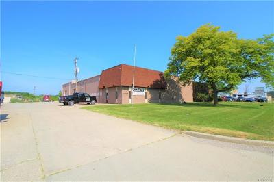 Harrison Twp Commercial/Industrial For Sale: 42259 Irwin Dr