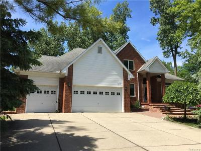 Rochester Hills Single Family Home For Sale: 2416 S Christian Hills Dr