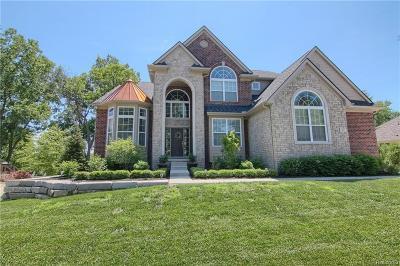Lake Orion Single Family Home For Sale: 47 Greenan Ln