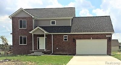 Fraser Single Family Home For Sale: 17088 Anita Ave N