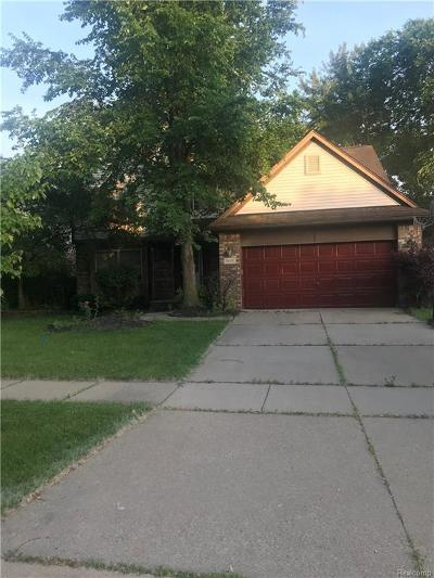 Canton Single Family Home For Sale: 1529 Brookdale Dr