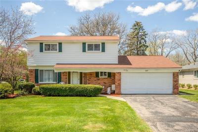 Southfield Single Family Home For Sale: 30153 Shoreham St