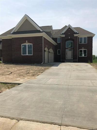 Macomb Single Family Home For Sale: 21530 Castellana Dr
