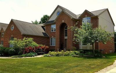 Auburn Hills Single Family Home For Sale: 3321 Paramount Ln