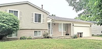 Warren Single Family Home For Sale: 29748 Mackenzie Cir W