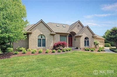 Lake Orion Single Family Home For Sale: 310 Cayuga Rd