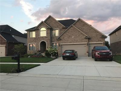 Macomb Single Family Home For Sale: 52460 Rejoice Dr