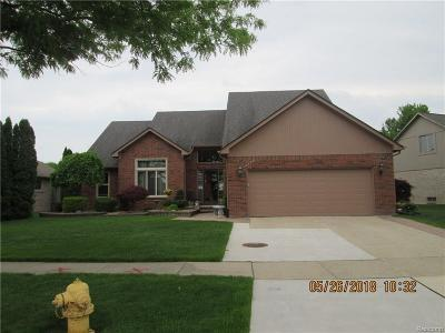 Macomb Single Family Home For Sale: 16466 Howard Dr.