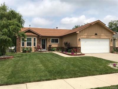 Canton Single Family Home For Sale: 42582 Woodbridge Dr