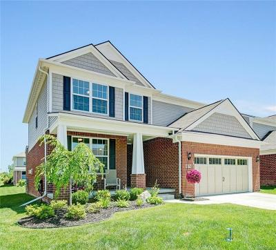 Canton Single Family Home For Sale: 6078 Branch Dr