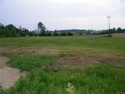 Lapeer Residential Lots & Land For Sale: 3908 Kennedy Rd