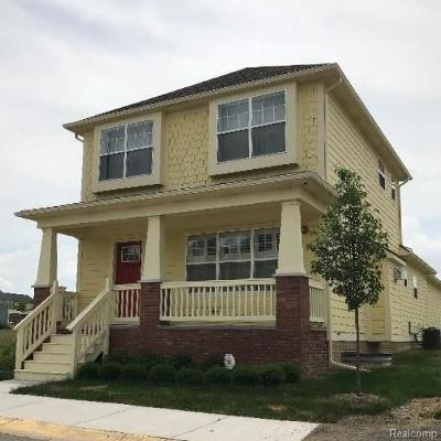 Auburn Hills Single Family Home For Sale: 310 Jotham Ave