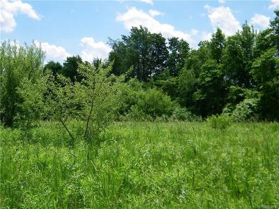 Lapeer Residential Lots & Land For Sale: Willis Rd