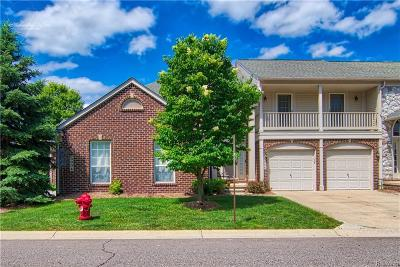 Canton Condo/Townhouse For Sale: 3894 Ravensfield Dr